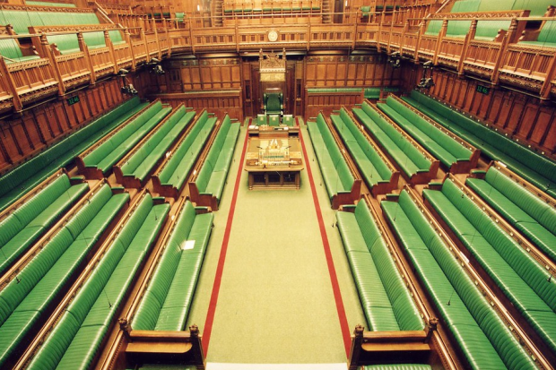 The green benches in the House of Commons